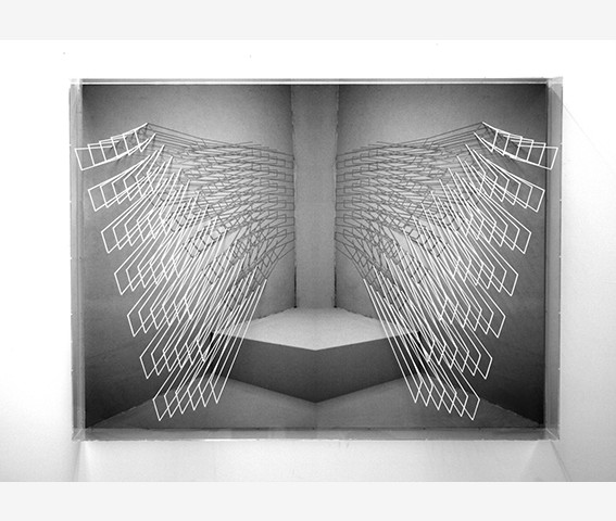 Emanuela Fiorelli - Ali-ante - 75x100x13 - 2012 filo elastico su vinile e plexiglass