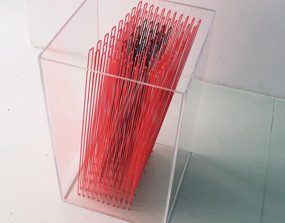 Fiorelli-sculptur-box-4-plexiglass-filo-elastico-50x30x30-2017